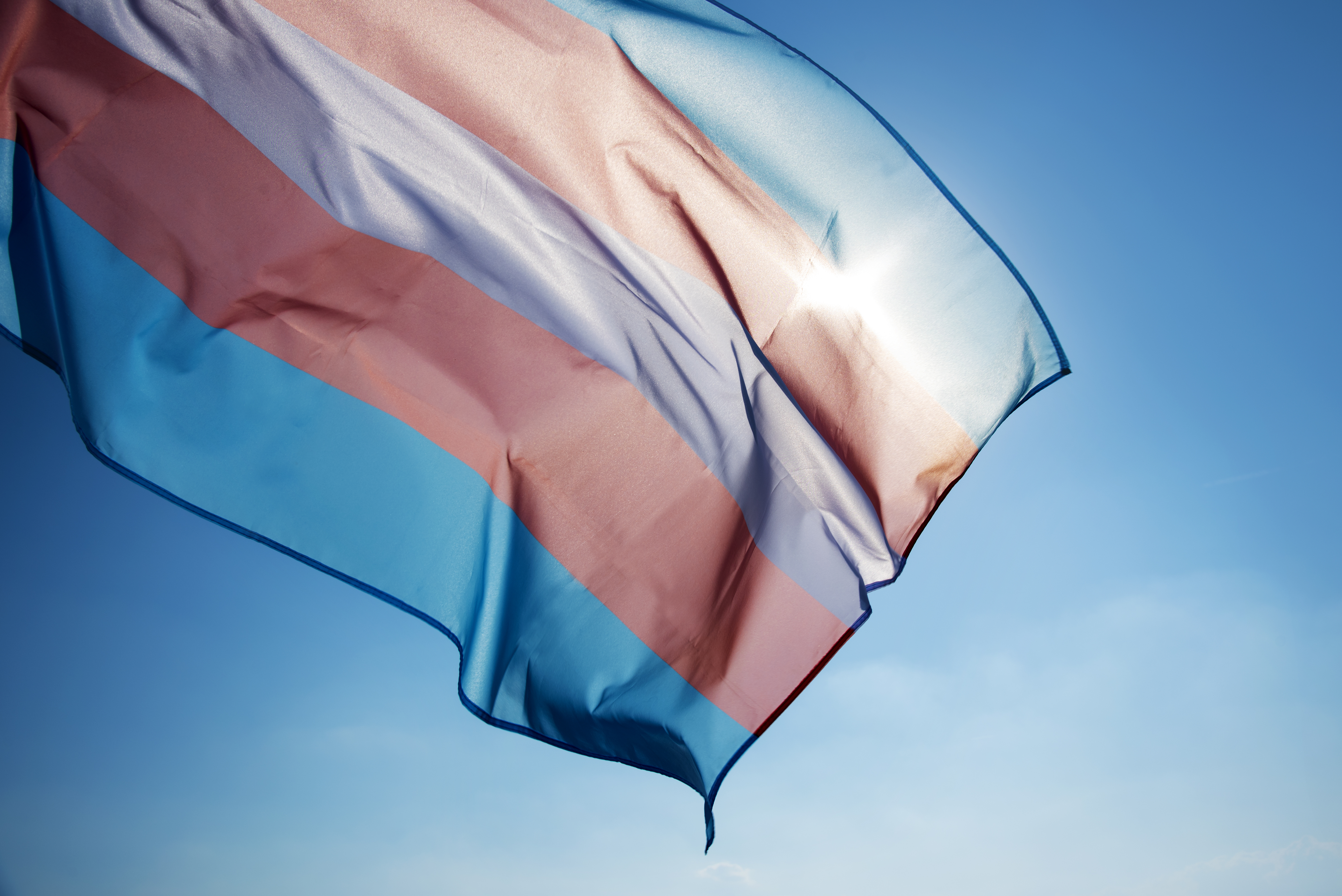 Chicago Therapy Collective trans flag